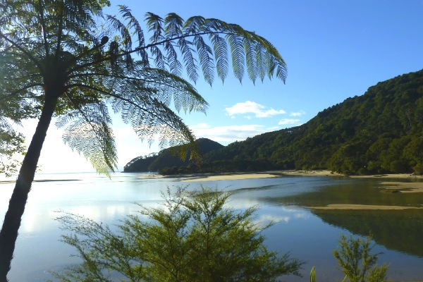 Abel Tasman National Park is within easy reach of those starting from Nelson - this gorgeous coastal park is suitable for adventurers of all ages and abilities.